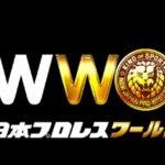 新日本プロレスワールドの会員数と利益はいくら?【新日本プロレス・2018年1月】