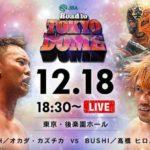 新日本プロレス 試合結果 2017.12.18 ロードトゥトウキョウドーム 後楽園【第3試合まで無料】