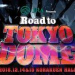 新日本プロレス・試合結果・2018.12.15・ロードトゥ東京ドーム・年内最終戦【第2試合まで無料】