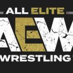 新団体・AEW(オール・エリート・レスリング)誕生!【新日本プロレス・2019年1月】