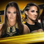 スチールケージマッチ、ティーガン・ノックス対ダコタ・カイ!【WWE・NXT・2020.3.4・PART1】