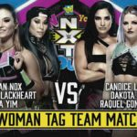 WWE・2020.6.7・NXTテイクオーバー:インユアハウスの対戦カード