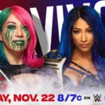 WWE・2020.11.22・サバイバーシリーズ2020・試合結果・PART2【女子王者対決~アンダーテイカー引退】